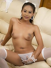 Big Dick Ladyboy Jasmine Anal Play In Lingerie And Stockings